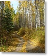 Bend In The Trail Metal Print