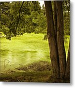 Bent Twig 5 Metal Print