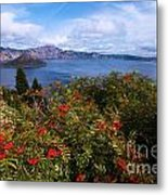 Berries By The Lake Metal Print