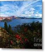 Berries On The Crater Metal Print