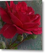 Betty's Red Rose II With Decorations Metal Print