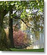 Between The Trees Metal Print