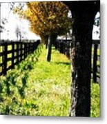 Between Two Farms Metal Print