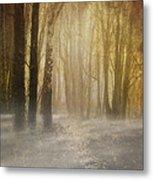 Beware Misty Woodland Path Metal Print
