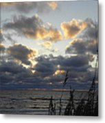 Beyond The Seagrass Metal Print