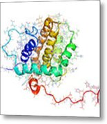 Bhrf 1 Protein From Epstein-barr Virus Metal Print