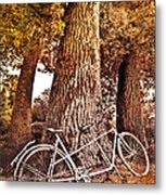 Bicycle Built For Two Metal Print
