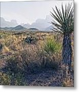 Big Bend National Park 2 Metal Print