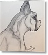 Big Boxer Metal Print
