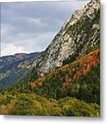 Big Cottonwood Canyon 2 Metal Print