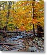 Big Hunting Creek Down Stream From Cunningham Falls Metal Print
