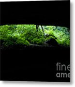 Big Mouth Cave, Tennessee Metal Print