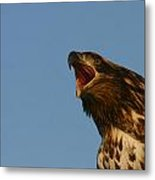 Big Mouth Metal Print