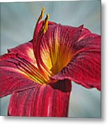 Big Red II Metal Print