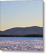 Big Squam Cold Metal Print