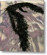 Big Sur Sand And Algae Metal Print