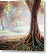 Big Tree Root Metal Print