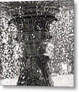 Bird Fountain Of Tears Metal Print
