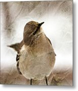 Bird In A Bag Metal Print by Skip Willits