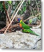 Bird In The Bush Metal Print
