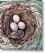 Bird Nest And A Feather Metal Print