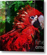 Bird Of Exotic Color Metal Print by Christine Mayfield