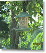 Bird On Full Feeder Metal Print