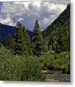 Bird Over Vail 1 Metal Print