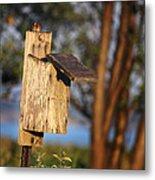Birdhouse 23 Metal Print
