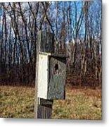 Birdhouse On A Pole Metal Print