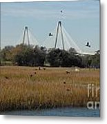 Birds And Bridge Metal Print