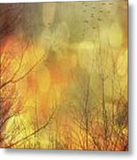 Birds In Flight At Sunset Metal Print