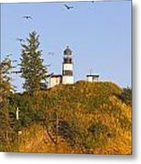 Birds In Flight Over Cape Metal Print by Craig Tuttle