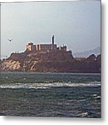 Birds In Free Flight At Alcatraz Metal Print