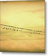 Birds On A Wire Yellow Orange Metal Print