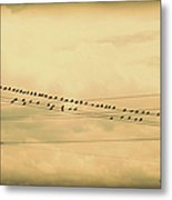 Birds On Wires Back In Time Metal Print