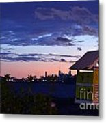 Birds View From Penthouse  Metal Print