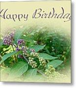 Birthday Greeting Card - American Beautyberry Shrub Metal Print
