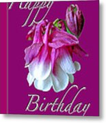 Birthday Greeting Card - Columbine Flower Metal Print