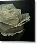 Birthday Rose Metal Print