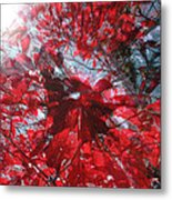 Black And Red Crescendo Metal Print