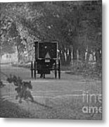 Black And White Buggy Metal Print