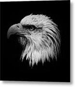 Black And White Eagle Metal Print