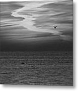 Black And White Sunset Metal Print by Aimee L Maher Photography and Art Visit ALMGallerydotcom