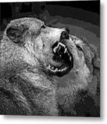 Black And White Wolf Fight Metal Print