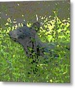 Black Bear In Green Metal Print