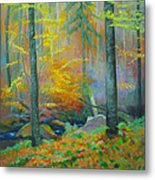 Black Forest Stream Metal Print