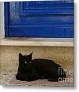 Black Greek Cat Metal Print