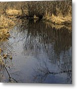 Black River Metal Print