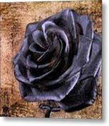 Black Rose Eternal   Metal Print by David Dehner